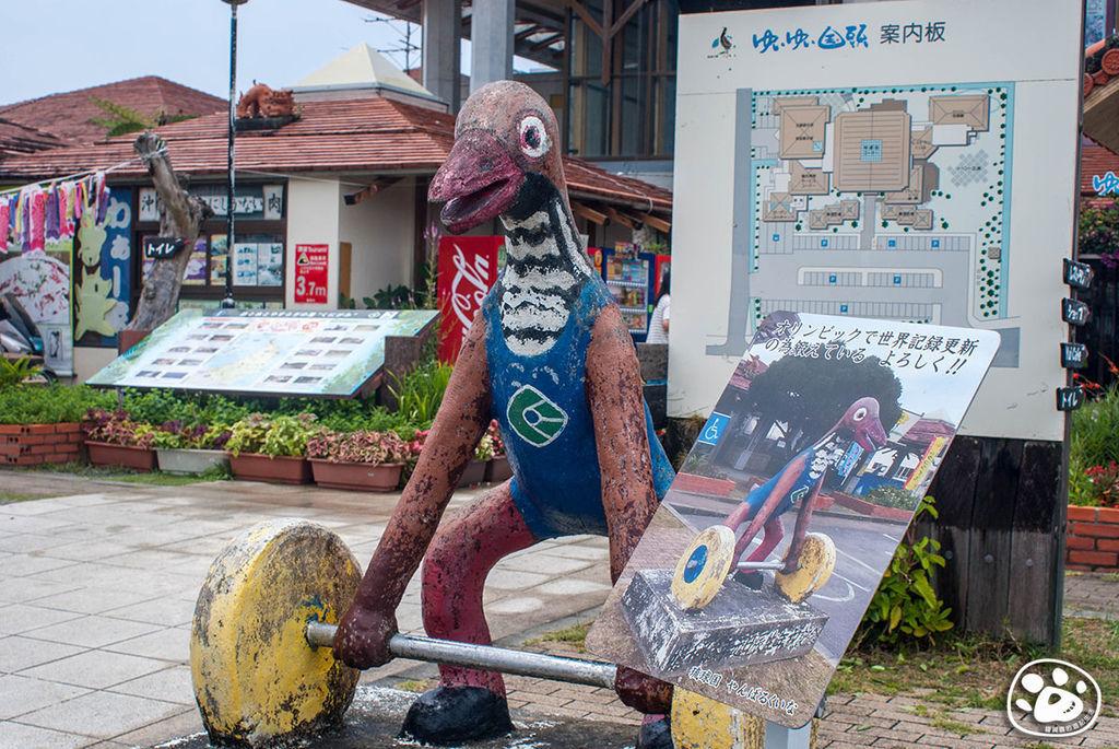 日本沖繩景點伴手禮名產-國頭村-道之驛YuiYui國頭 (4).jpg