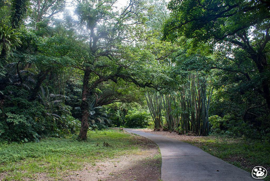 日本沖繩景點-GANGALA之谷 (13).jpg