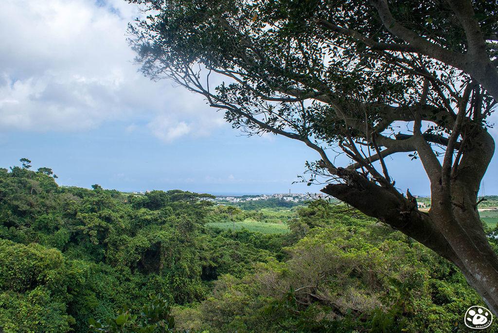 日本沖繩景點-GANGALA之谷 (39).jpg