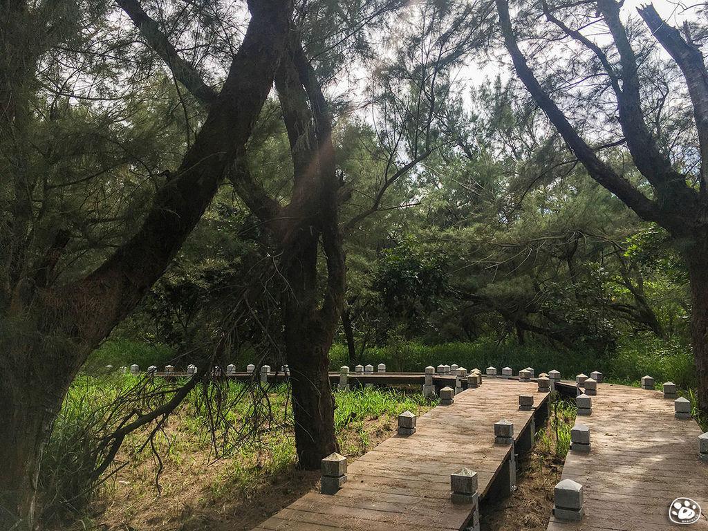 台南北門景點-雙春濱海遊憩區- Vanaheim 愛莊園 (21).jpg