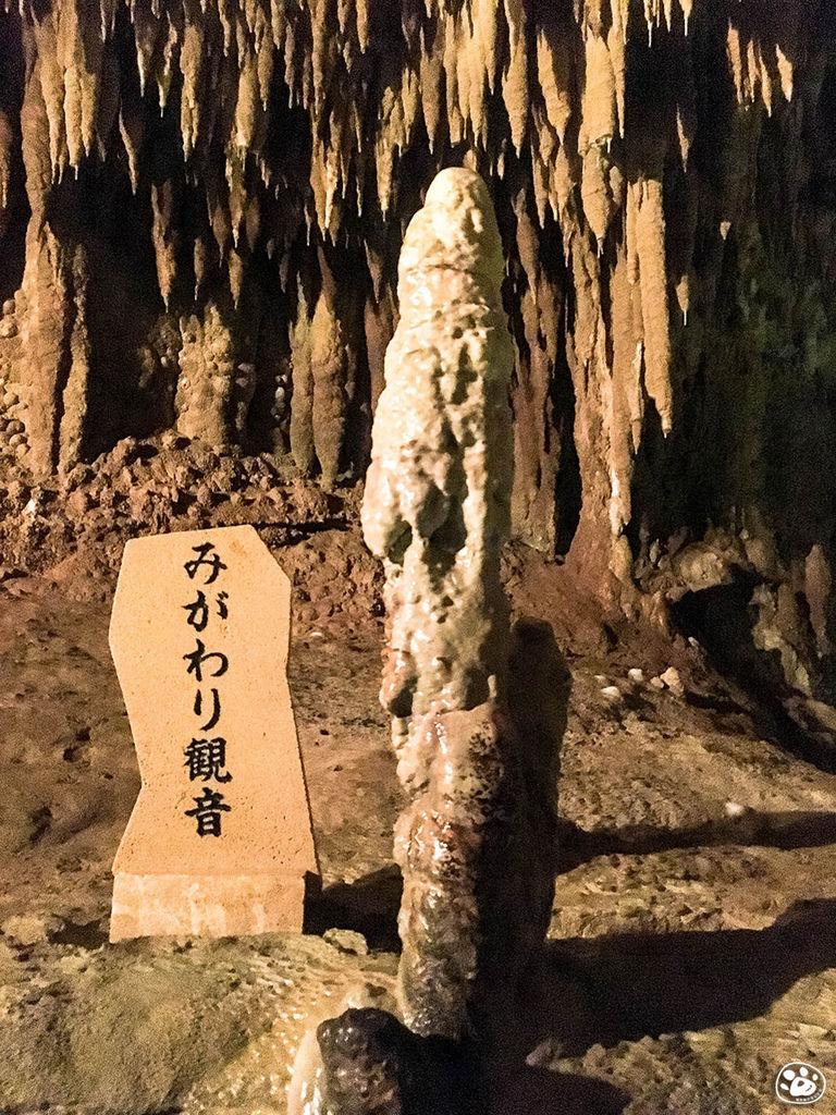 貓與蟲-日本沖繩世界文化王國-玉泉洞 (7).jpg