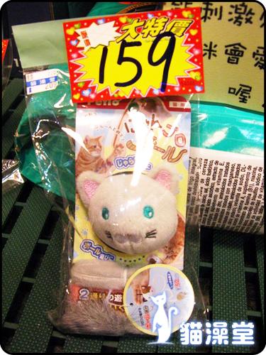 cat0602-2.jpg