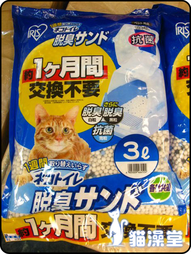 cat0606-7.jpg