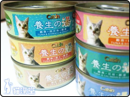 cat0606-2.jpg
