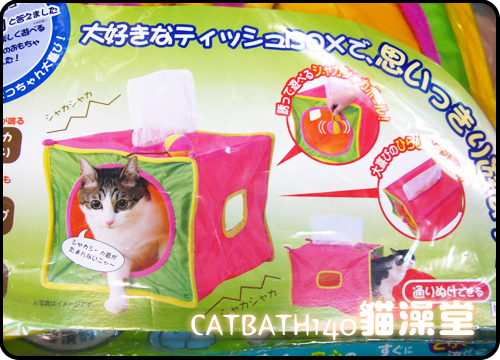cat0422-8.jpg
