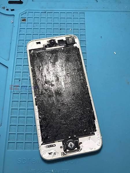 我的老天鵝啊!這是什麼手機
