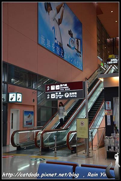 DSC_1151.jpg