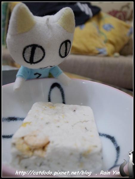 47 我現在要介紹我們貓族最愛的海鮮粥給貓貓雨女王.JPG