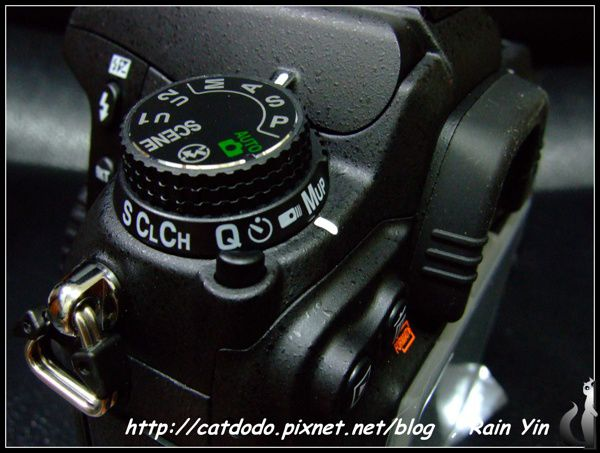 DSCF9947.jpg