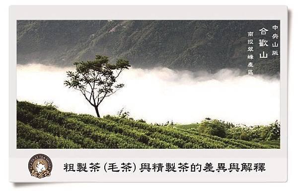 貓茶坊- 築風舞茶業 合歡山茶園.jpg