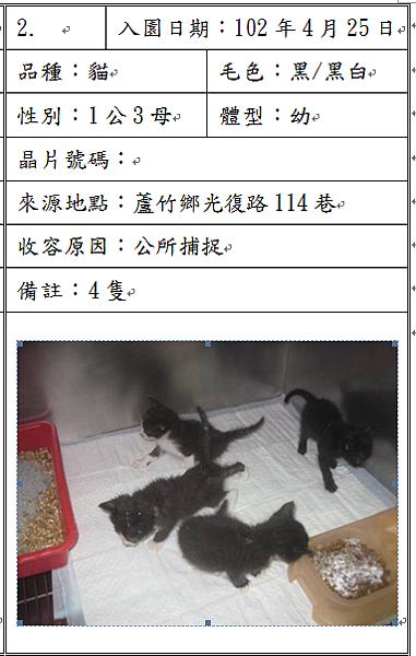cat042501