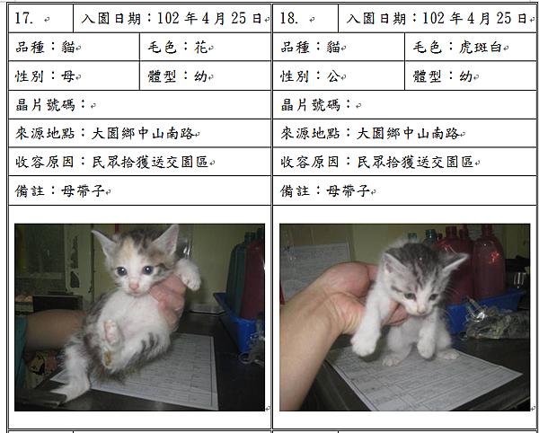 cat042506