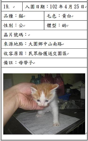 cat042507