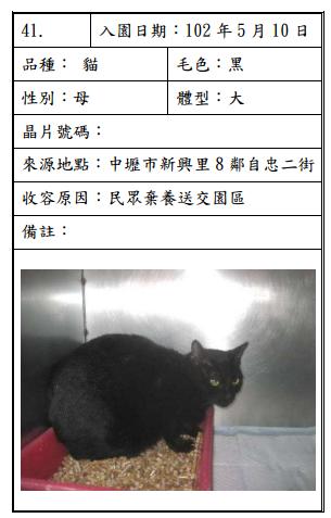 cat051001