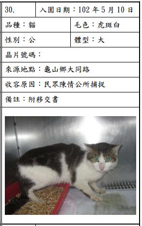 cat051005