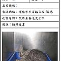 cat051009