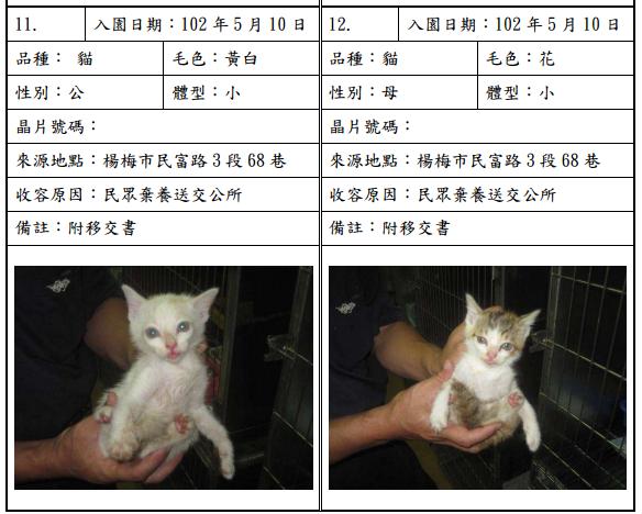 cat051008