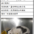 cat051010
