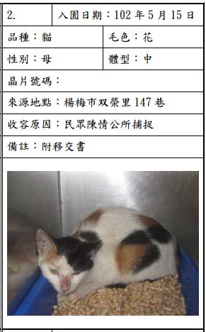 cat051501
