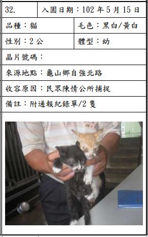 cat051506