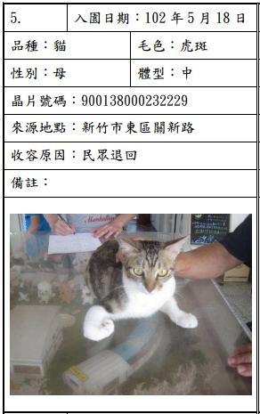 cat052001