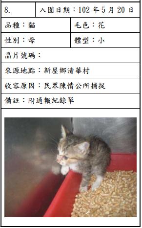 cat052002