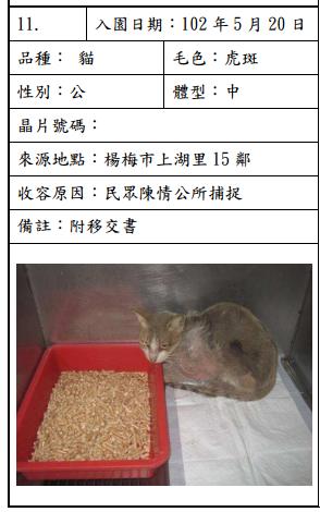 cat052004