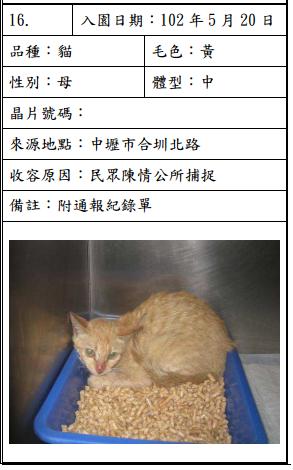 cat052005