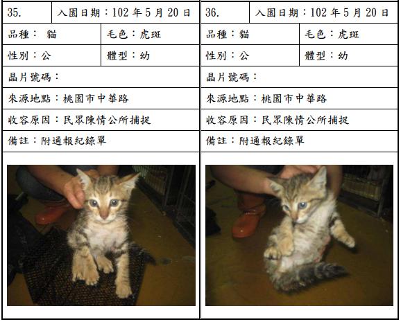 cat052010