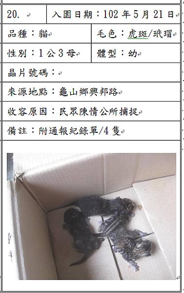 cat052102