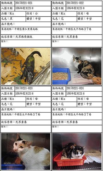 入園公告_民眾棄養_花花.jpg