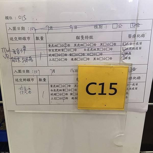 20180728 新屋_180729_0016.jpg