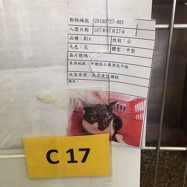 20180728 新屋_180729_0021.jpg