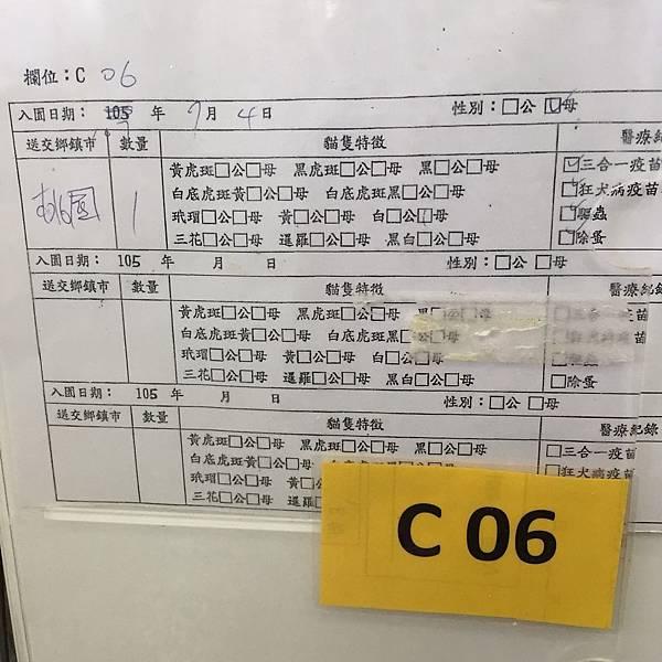 20180728 新屋_180729_0036.jpg