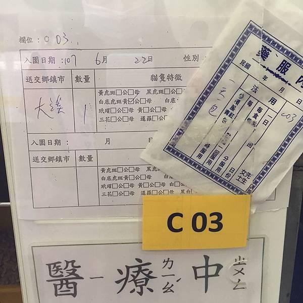 20180728 新屋_180729_0034.jpg