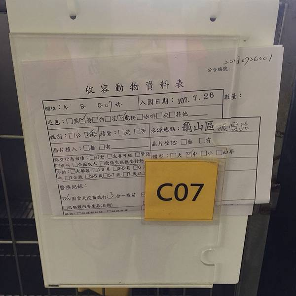 20180728 新屋_180729_0040.jpg
