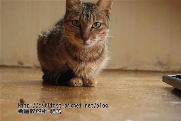 IMG_8777.JPG