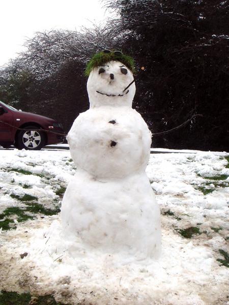 可愛的雪人