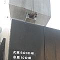 IMG_4046.JPG