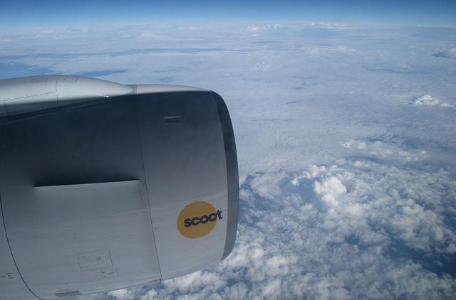 Japan Scott fly