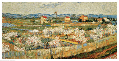 vincent-van-gogh-peach-blossoms-in-the-crau-c-1889.jpg