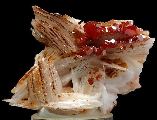 釩鋅礦 VANADINITE on BARYTE - 摩洛哥.jpg