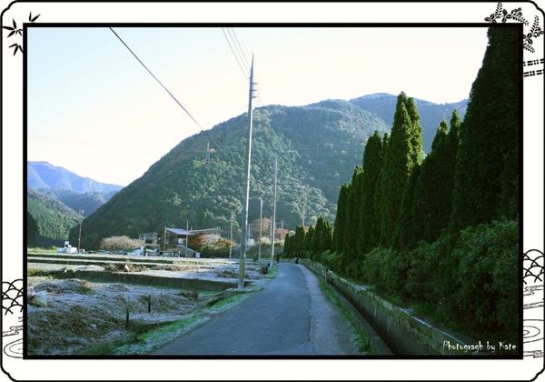 照片 593-2.jpg