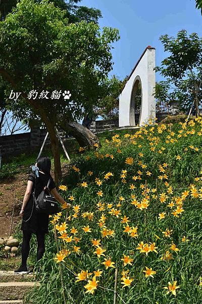 DSC_2183_meitu_11.jpg