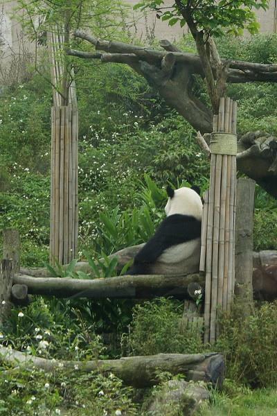 zoo2_001.jpg