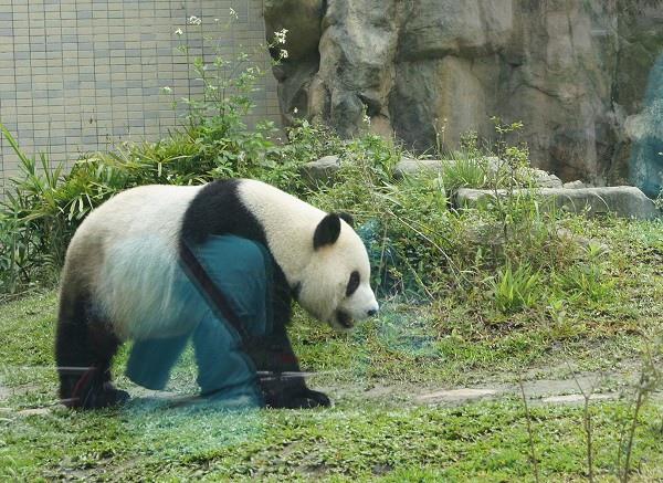 zoo_003.jpg