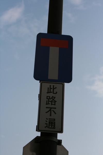 20090410一個人的兒童樂園 (541).JPG