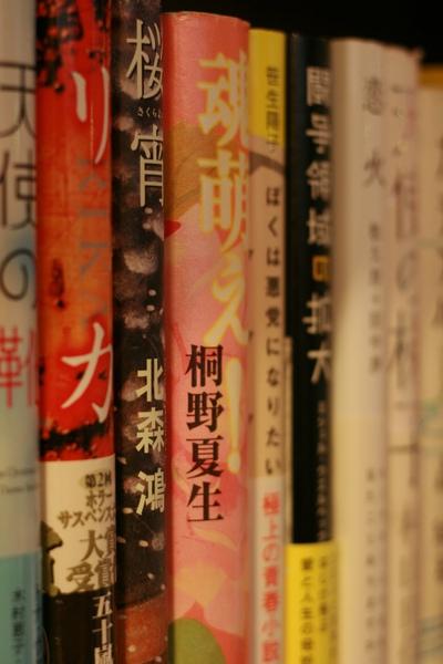 20090410一個人的兒童樂園 (568).JPG