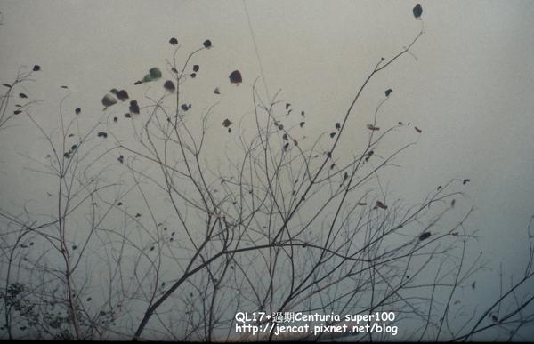 28A_0069.jpg