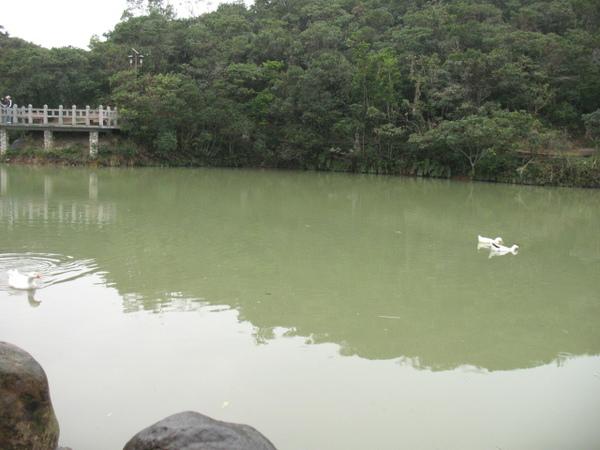 20071208_ 情人湖公園-山裡的湖.jpg